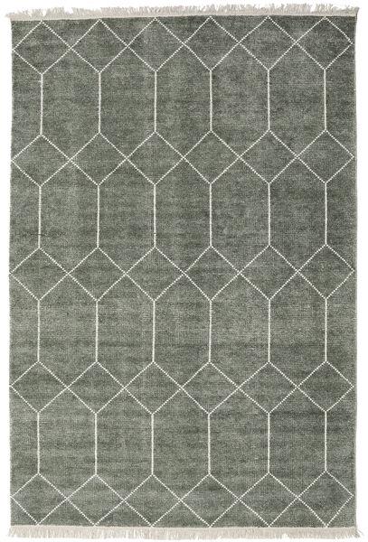 Kiara - フォレストグリーン 絨毯 200X300 モダン 手織り 薄い灰色/濃いグレー ( インド)