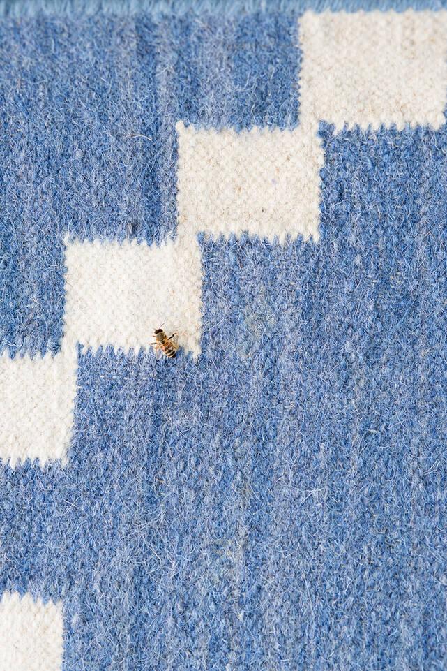 廊下内の青色のてキリム モダン絨毯。