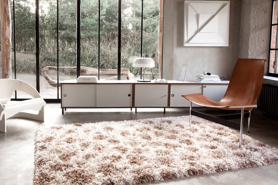 オフィス内の茶色のてberber / シャギー絨毯。