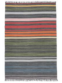 Rainbow Stripe - グレー 絨毯 140X200 モダン 手織り 濃いグレー/オリーブ色 (綿, インド)