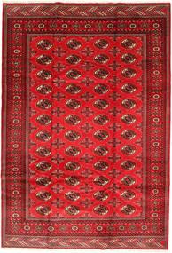 トルクメン 絨毯 201X293 オリエンタル 手織り 錆色/深紅色の/赤 (ウール, ペルシャ/イラン)