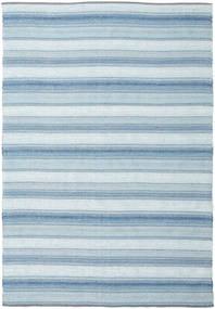 Wilma - 青 絨毯 220X320 モダン 手織り 水色/薄い灰色 (綿, インド)