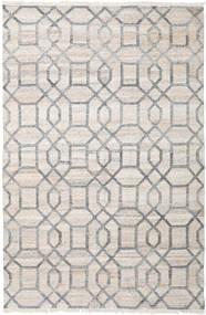 屋外カーペット Tracy 絨毯 200X300 モダン 手織り 薄い灰色 ( インド)
