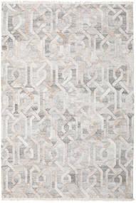 屋外カーペット Trinny - 茶/Nature 絨毯 200X300 モダン 手織り 薄い灰色 ( インド)