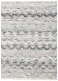 屋外カーペット Wavy 絨毯 170X240 モダン 手織り 薄い灰色 ( インド)