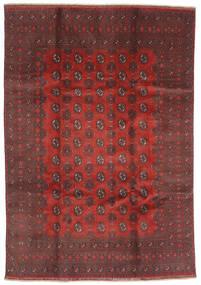 アフガン 絨毯 200X288 オリエンタル 手織り 深紅色の/濃い茶色 (ウール, アフガニスタン)