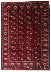トルクメン 絨毯 204X285 オリエンタル 手織り 深紅色の/濃い茶色 (ウール, ペルシャ/イラン)