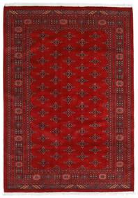 パキスタン ブハラ 3Ply 絨毯 169X240 オリエンタル 手織り 錆色/深紅色の (ウール, パキスタン)