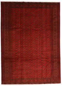 トルクメン 絨毯 248X340 オリエンタル 手織り 赤/錆色 (ウール, ペルシャ/イラン)