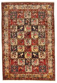 バクティアリ Collectible 絨毯 212X311 オリエンタル 手織り 深紅色の/濃い茶色 (ウール, ペルシャ/イラン)